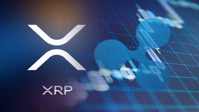 Ripple ve XRP